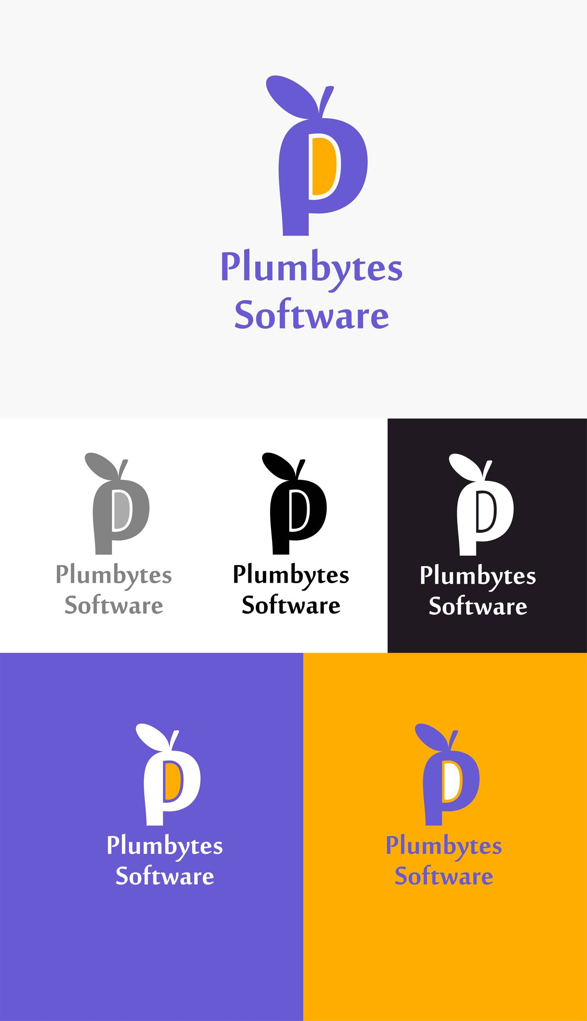 Логотип для компании-разработчика ПО - дизайнер Silvanovich_AD