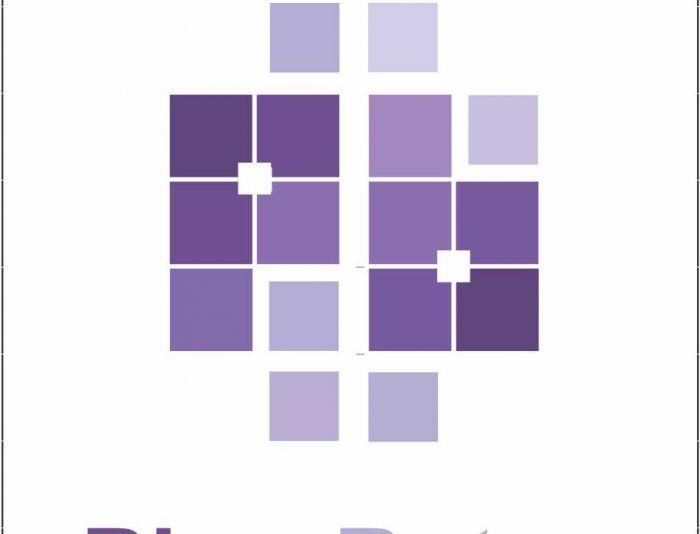 Логотип для компании-разработчика ПО - дизайнер MihailPaliy