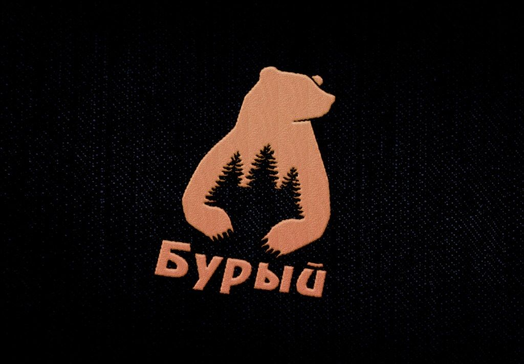 Логотип для обуви - дизайнер polinesina