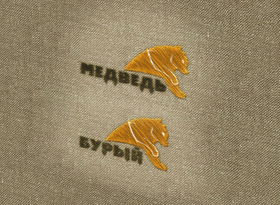 Логотип для обуви - дизайнер Leenna