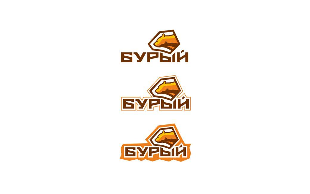 Логотип для обуви - дизайнер Alexey_SNG