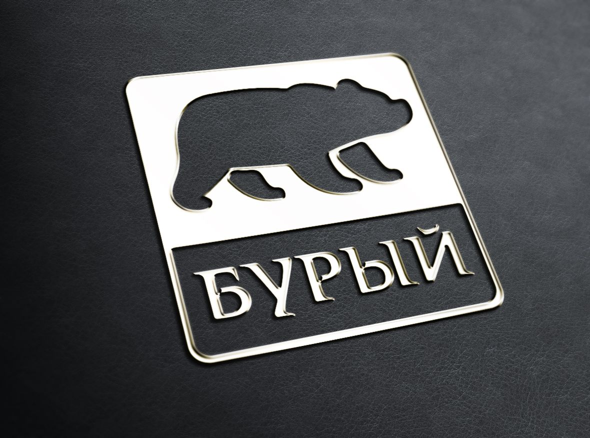 Логотип для обуви - дизайнер Gas-Min