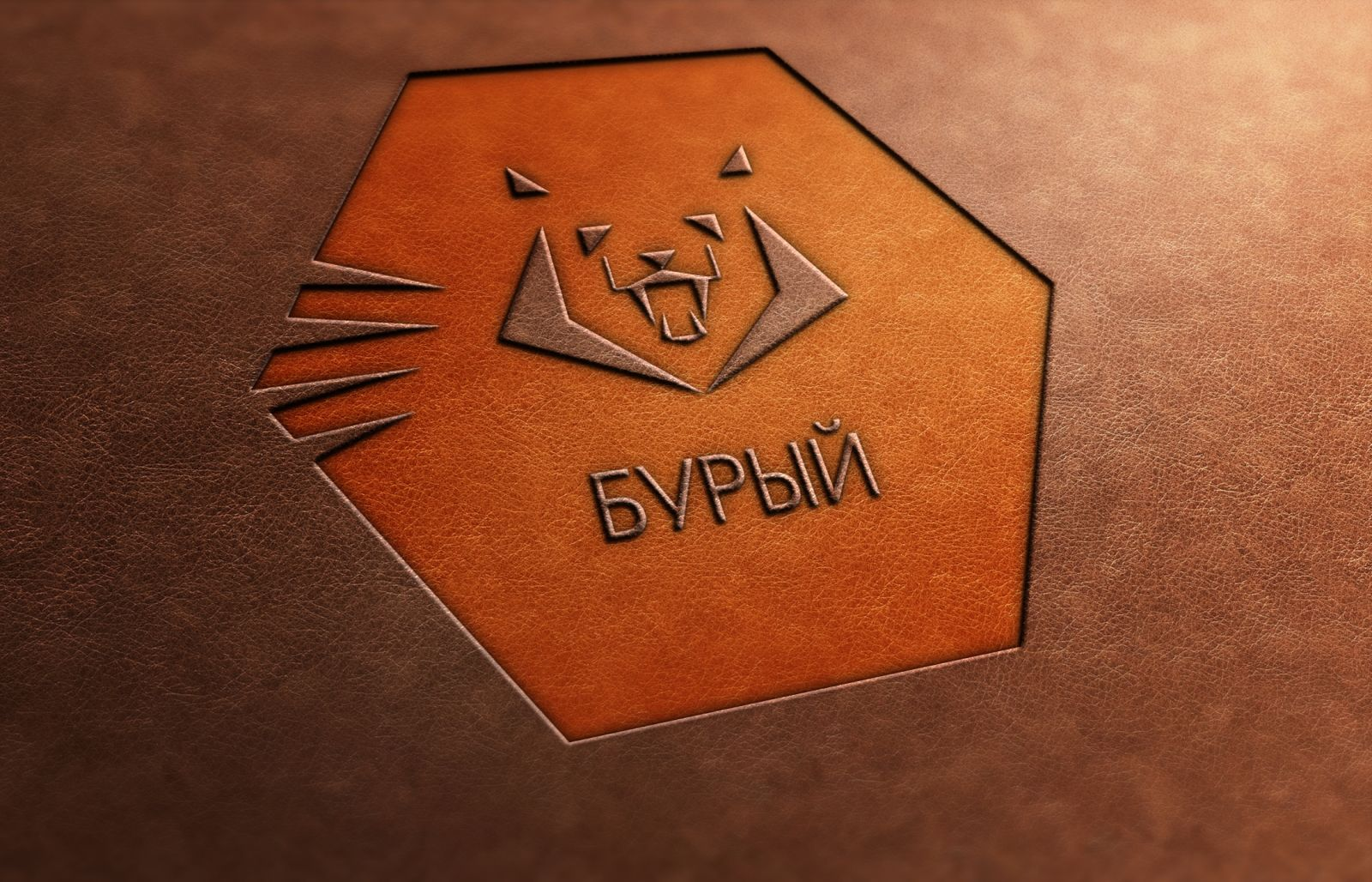 Логотип для обуви - дизайнер Olya_Thea