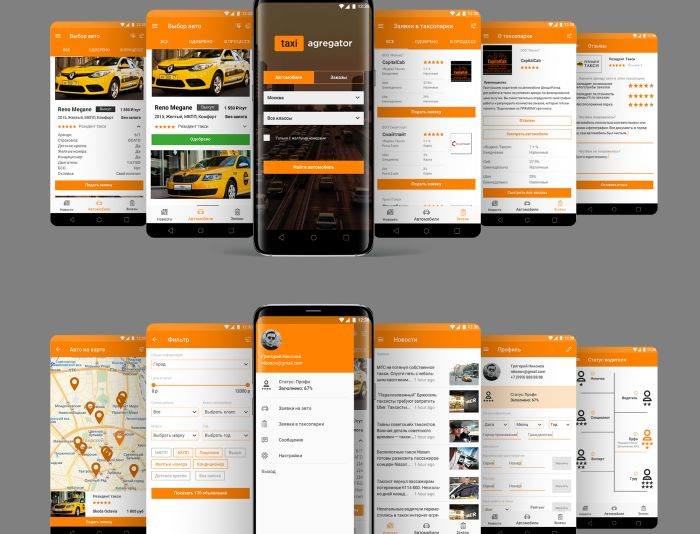 Разработка дизайна мобильного приложения - дизайнер LanaM