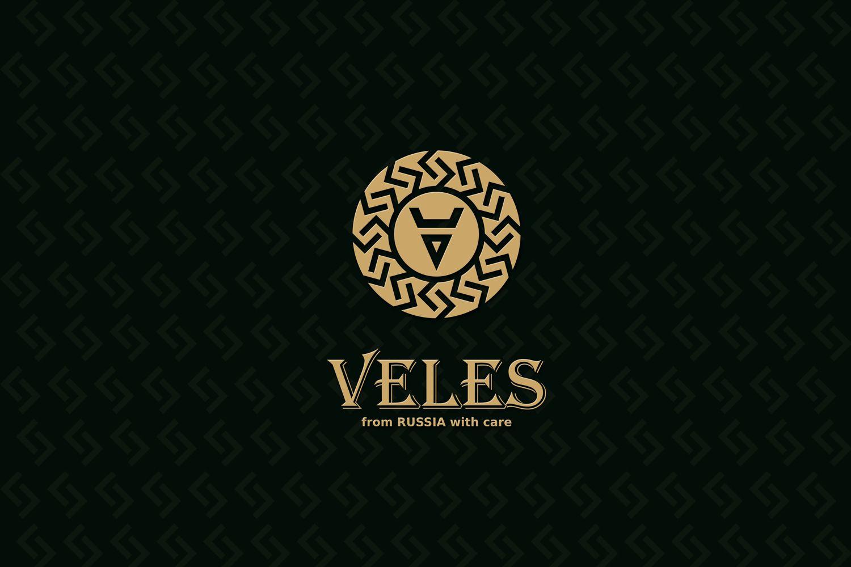 Лого и фирменный стиль для Veles - дизайнер DIZIBIZI