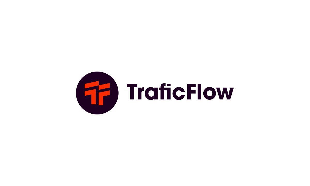 Лого и фирменный стиль для Traffic Flow - дизайнер VF-Group